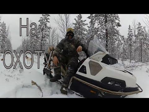 На охоту на снегоходе. Stels Viking 600