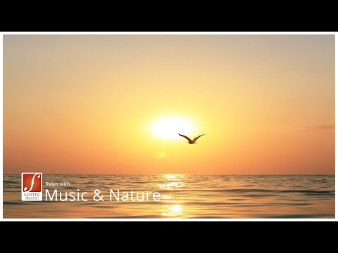 Entspannungsmusik mit Panflöte, Harfe und Streichorchester - Moments of Silence relaxing music