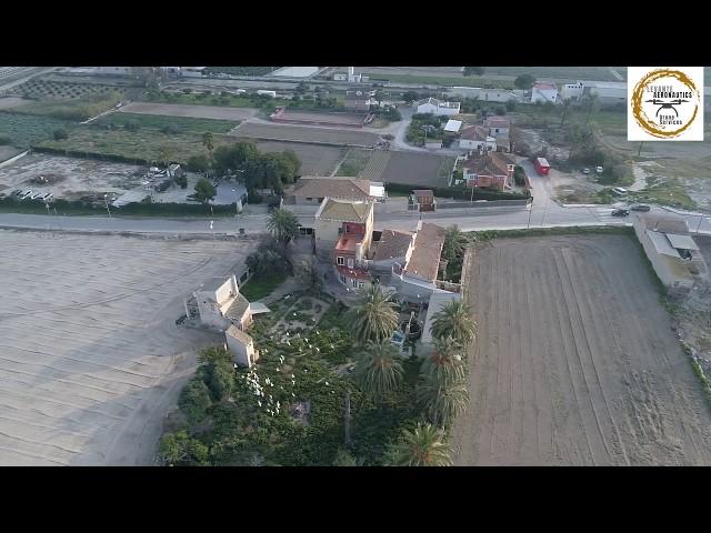 Suelta de Palomos Deportivos en Granja de Rocamora (Alicante) | Sociedad de Colombicultura | 1080 HD