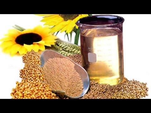 Produção de Biodiesel na Fazenda - Matéria Prima