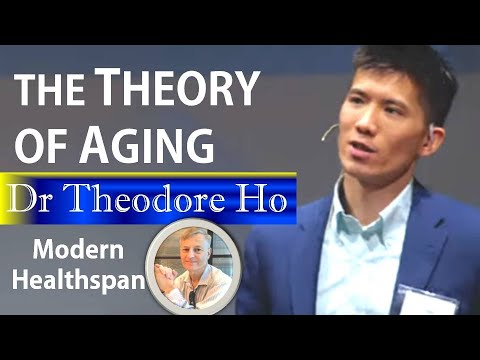 The Theory Of Aging   Dr. Theodore Ho Interview Series Ep5