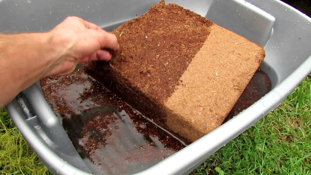 Filling Raised Beds with Peat Moss, Coco Coir & Leaf Gro: How to Use Coco  Coir