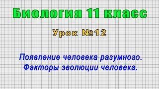 Биология 11 класс (Урок№12 - Появление человека разумного. Факторы эволюции человека.)