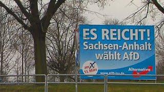 Keine Alternative? Der Siegeszug der AfD in Sachsen-Anhalt