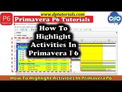 how-to-highlight-activities-using-filters-and-spotlight-feature-in-primavera-p6-||-dptutorials