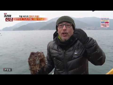 코리아 헌터 84 180108 겨울 바다를 점령한 껍데기 대물을 찾아라