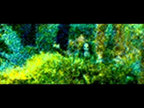Sinister - Trailer en español HD