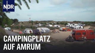 Neustart in den Dünen - Camṗing auf Amrum | Die Nordreportage | NDR Doku