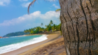 Sri Lanka - Beautiful Nature
