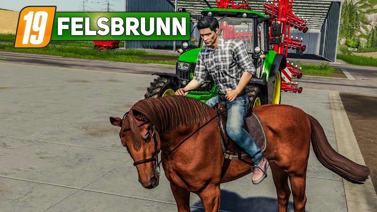 Ls19 Pferde