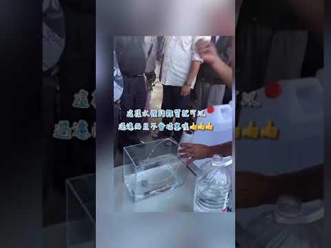 【新生王子】電動飲用水抽水器 智能飲水器 抽水機 飲水機 吸水器 水桶取水器 自動飲水 台灣製造