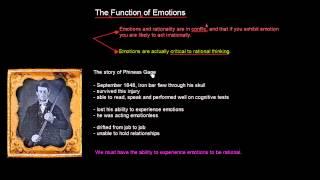 Function Of Emotions | Organisational Behavior | MeanThat