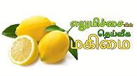 எலுமிச்சையின் தெய்வீக மகிமை Aanmeega Thagavalgal Puthuyugam TV