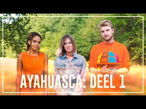 Ayahuasca Special deel 1: de weg naar Ayahuasca | Drugslab