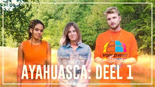 Ayahuasca Special part 1: the road to Ayahuasca | Drugslab YouTube Videos