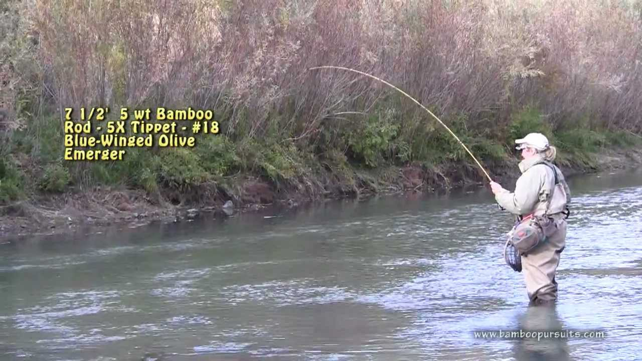 Bamboo rods on the owyhee river 720p 30 youtube for Owyhee river fishing report