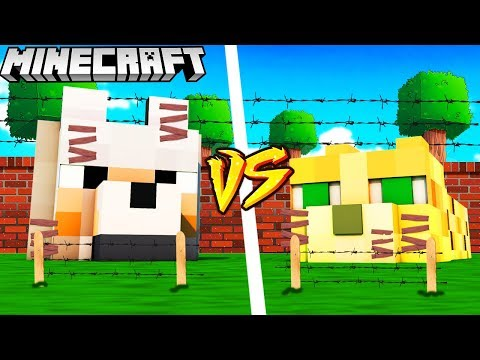 BAZA HEKTOR VS BAZA PYSIA (Pies Vs Kot) - MINECRAFT | Vito Vs Bella