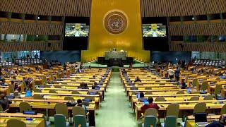 GLOBALink | World more globalized since restoration of China's lawful seat in UN: U.S. expert