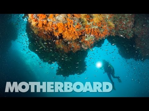 The Search for New Antibiotics Under the Sea