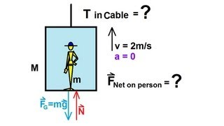 Physics - Mechanics: Newton