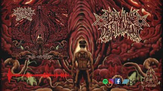 DEVINE DEFILEMENT - PUS COVERED [SINGLE] (2020) SW EXCLUSIVE