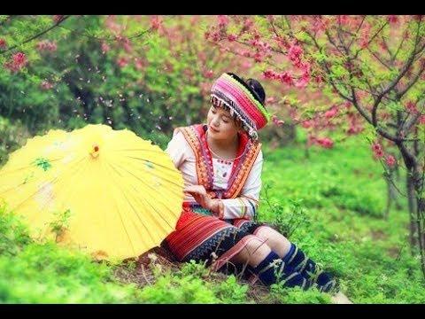 Suab Nkauj  khob siab | Hmong new song 2017 - 2017 #3 thumbnail