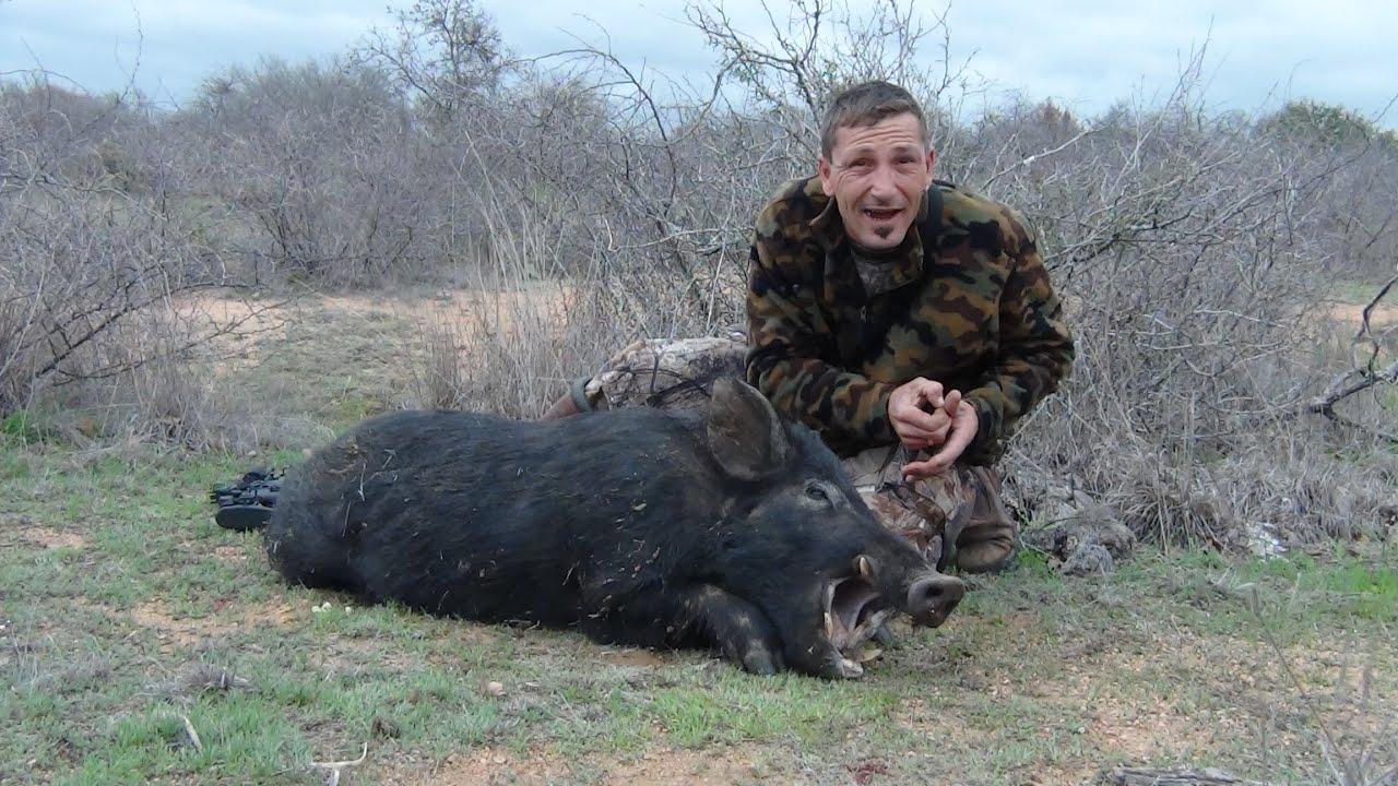 R Hogs Feral Hog Hunting, Big...