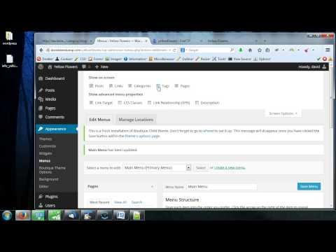 WordPress appearance menus