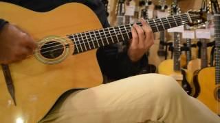 Stringphonic Basic Model ?for GuitarShopTANTAN