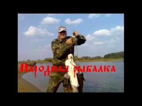 видео приколы на рыбалке 2016 год