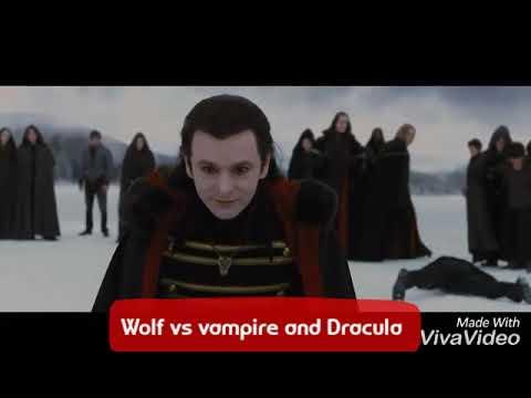 Vampire Vs Serigala