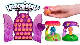 Coffret Collector Hatchimals CollEGGtibles
