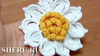 Flower Crochet How to  Урок 31 Как связать цветок крючком