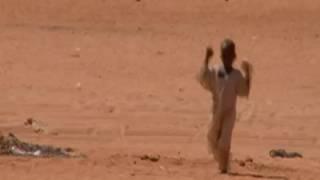 Sand & Sorrow Trailer