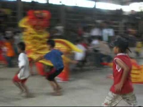 Chinese Lion and Dragon Dance at Roxas,Palawan 2009-3