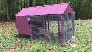 Little Cottage Co Atlanta Chicken Coop - Review and modifications
