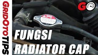 Fungsi Radiator Cap | GridOto Tips