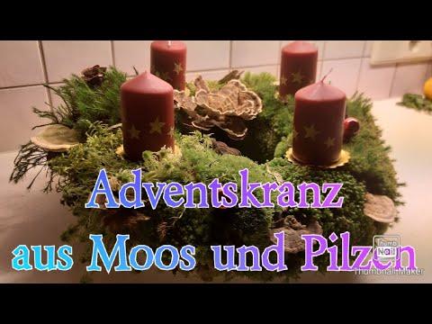 lebender-adventskranz-aus-moos-und-pilzen