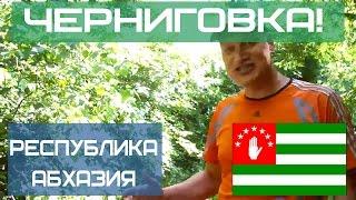 Республика Абхазия. Черниговка. Супер место!(Абхазия. Черниговка. Кындыг и горячие источники - замечательное место, которое я рекомендую всем, кто приеха..., 2013-08-14T05:29:46.000Z)