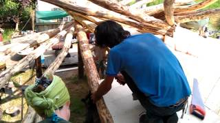 Building A Roundwood Reciprocal Roof Ecobuilding