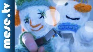 Rutkai Bori Banda: Hópehely keringő (gyerekdal) | MESE TV