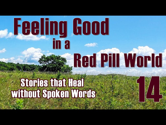 Feeling Good in a Red Pill World #14 Stories that Heal without Words