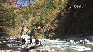 [富山]黒部峡谷の紅葉風景[UHD4K顔声曲無] - Autumn leaves in Kurobe gorge