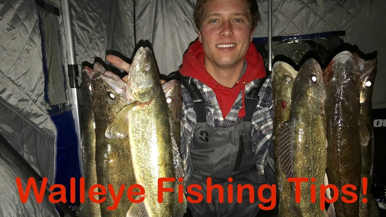 Walleye Ice Fishing Tips Saginaw Bay
