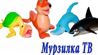 Подводный мир для детей. ПОМОГИТЕ, я ПОТЕРЯЛСЯ! Часть 2. Театр игрушек для детей. Мурзик ТВ(Подводный мир для детей. ПОМОГИТЕ, я ПОТЕРЯЛСЯ! Часть 2. Театр игрушек для детей. Мурзик ТВ Спонсором данного..., 2016-06-13T11:07:06.000Z)