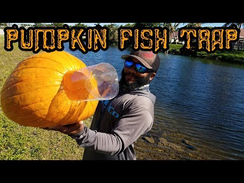 DIY Fish Trap With Halloween Pumpkin | Monster Mike