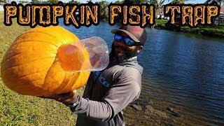 DIY Pumpkin Fish Trap!