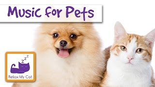 Music for Pets - Music for Guinea Pigs, Rabbits, Hamsters, Birds, Rats, Mice and Gerbils