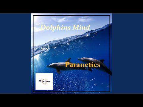 Dolphins Mind (Herzsprung Version)