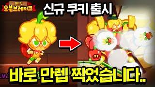 【신규 쿠키:파프리카맛 쿠키】 아이언맨으로 변신한다고?…